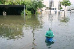 Houston flooding relief efforts