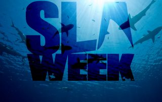 shark-week-SLA-Week