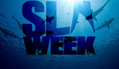 shark-week-SLA-Week